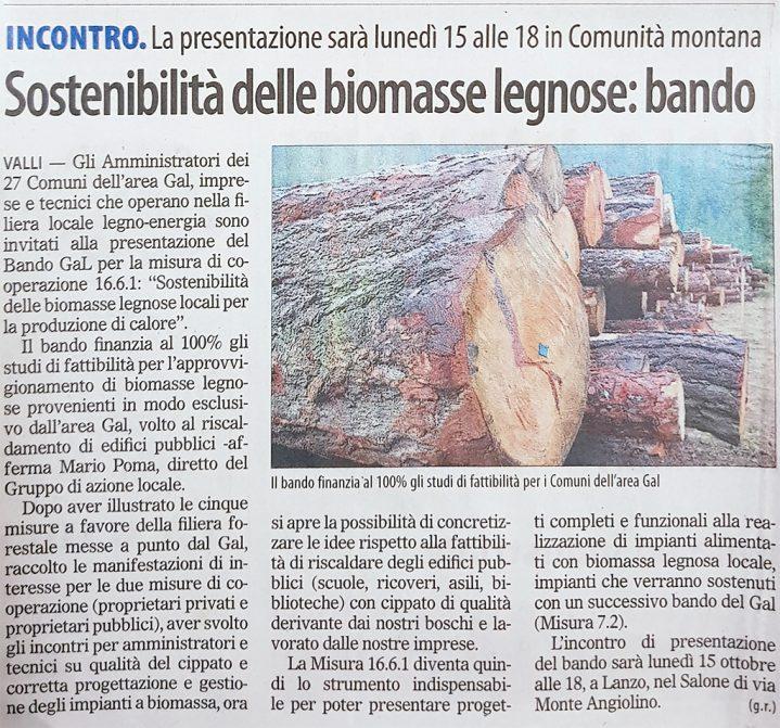 """Articolo del """"il Risveglio"""" inerente alla sostenibilità delle biomasse legnose"""