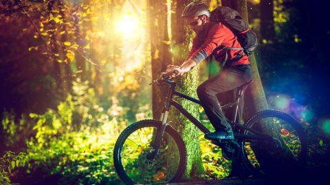 Immagine rappresentativa persona in mountain bike